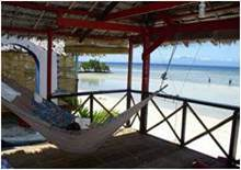 diving beach bohol philippinen